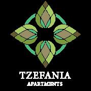 HOTEL TZEFANIA